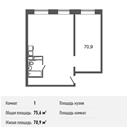 Планировка 1-комн. квартиры 75,60 м2